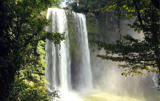 Cascada Misol Ha | Visit Chiapas